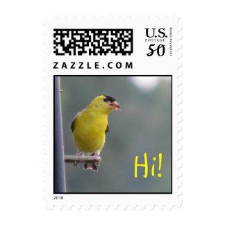 Hi! Postage