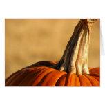 Hi Pumpkin Greeting Cards