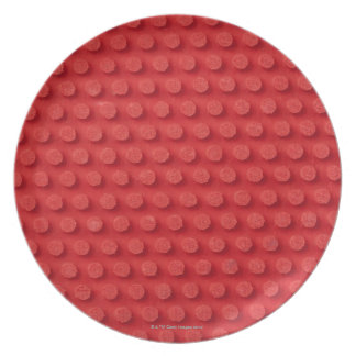 Hi-Res macro image of a studded ping pong Dinner Plate
