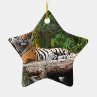 Hi-Res Malay Tiger Lounging on Log Ceramic Ornament
