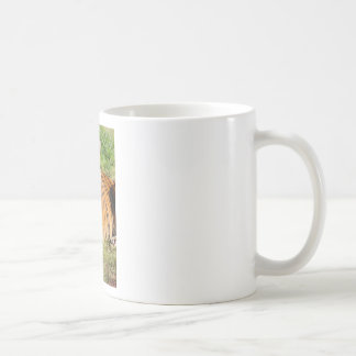 Hi-Res Malayan Tiger Coffee Mug
