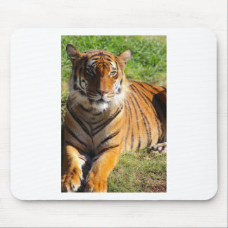 Hi-Res Malayan Tiger Mouse Pad