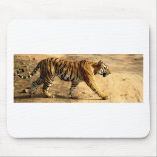 Hi-Res Tigres Stalking Mouse Pad