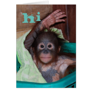 Hi Sweet Baby Orangutan Card
