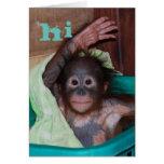 Hi Sweet Baby Orangutan Greeting Card