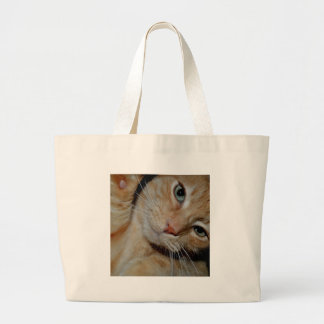 Hi! The Funny Tabby Large Tote Bag