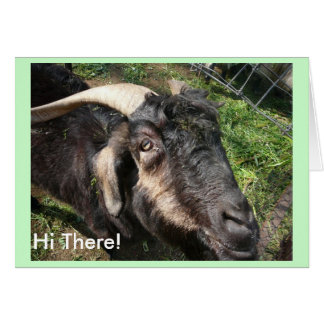 Hi There! Card