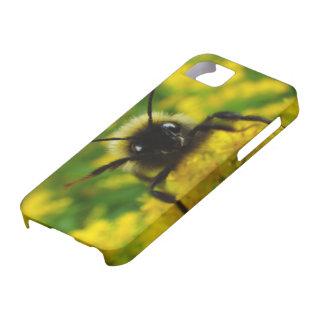 Hi to the Public iPhone SE/5/5s Case