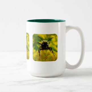 Hi to the Public Two-Tone Coffee Mug