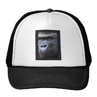 Hi. Trucker Hat