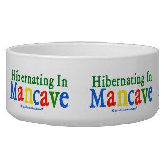 Hibernating in Mancave Bowl