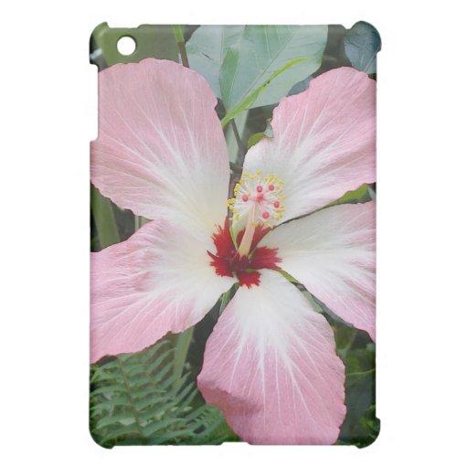 Hibicus rosado