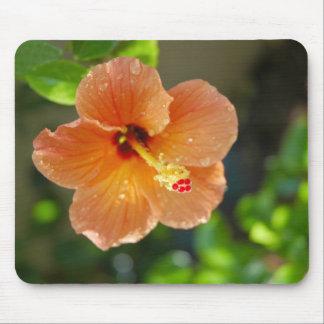 Hibiscis Flower Mousepad