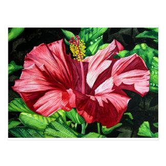 Hibisco 3, flor roja, jardín, arte de la acuarela postal