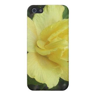 Hibisco amarillo doble 1 iPhone 5 protectores