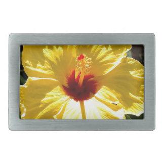 Hibisco amarillo hebillas cinturón rectangulares