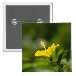 Hibisco amarillo pin