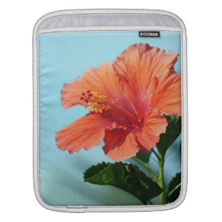 Hibisco anaranjado - caso del iPad Funda Para iPads