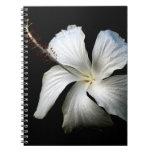 Hibisco blanco contra black.jpg libros de apuntes con espiral