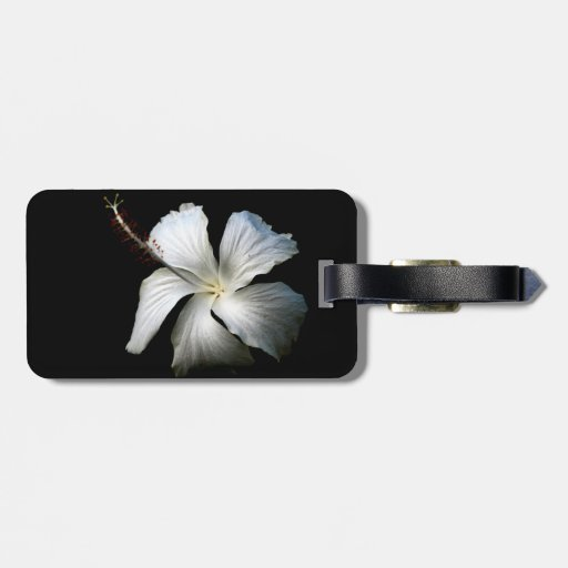 Hibisco blanco contra black.jpg etiqueta para maleta