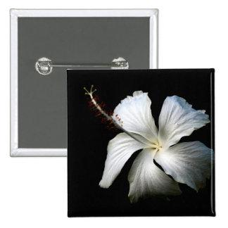 Hibisco blanco contra black jpg pins