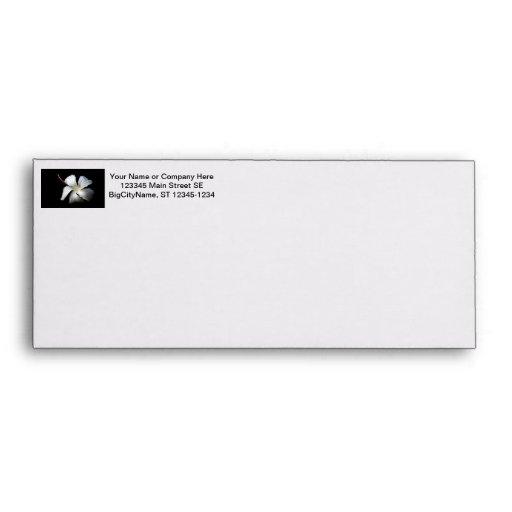 Hibisco blanco contra black.jpg sobres