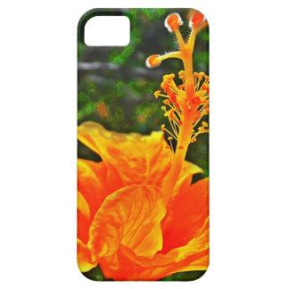 Hibisco Color of orange iPhone 5 Case