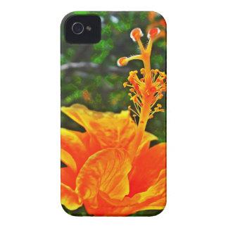 Hibisco Color of orange iPhone 4 Cases