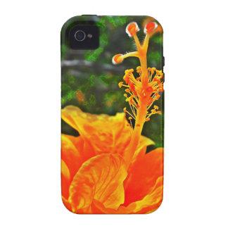 Hibisco Color of orange iPhone 4/4S Covers