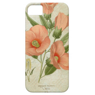 Hibisco coralino iPhone 5 funda