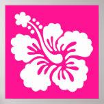 Hibisco de color rosa oscuro y blanco poster