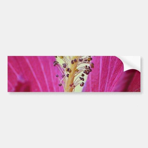 Hibisco de la flor etiqueta de parachoque