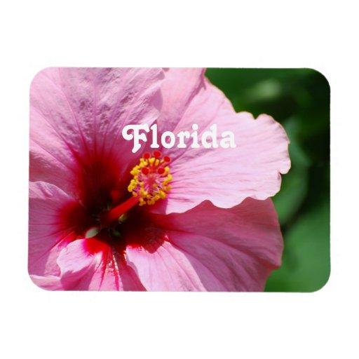 Hibisco de la Florida Imanes Flexibles