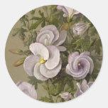 Hibisco de la lila - arte del vintage etiquetas