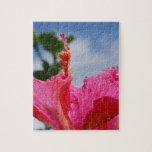 Hibisco de las rosas fuertes puzzles con fotos
