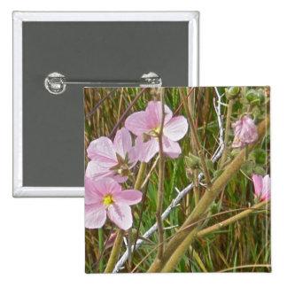 Hibisco del rosa salvaje en artículos del saladar pin cuadrada 5 cm