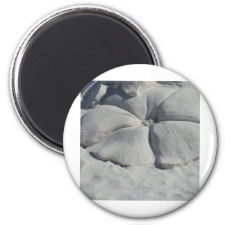Hibisco en arena imanes para frigoríficos