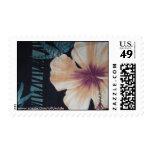 hibisco, enviando las flores sellos