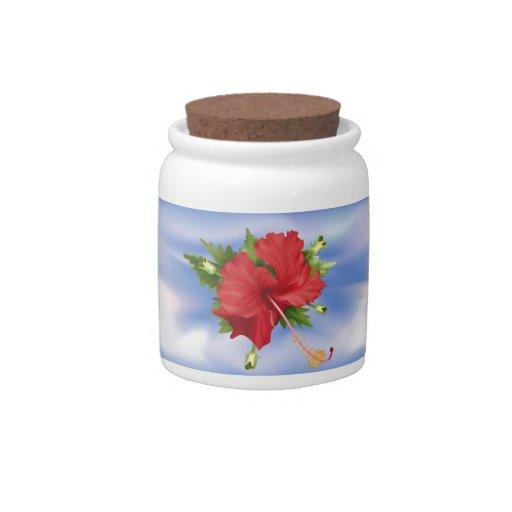 Hibisco floreciente jarras para caramelos