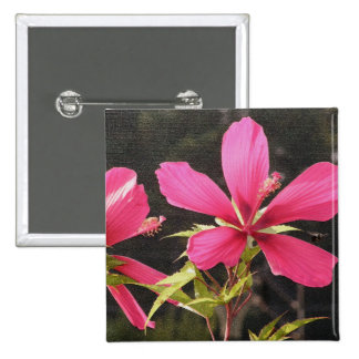 Hibisco 'Flyer rojo Pin