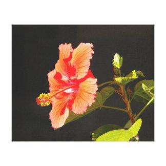 Hibisco grabado en relieve, la flor de Brenda Impresion En Lona