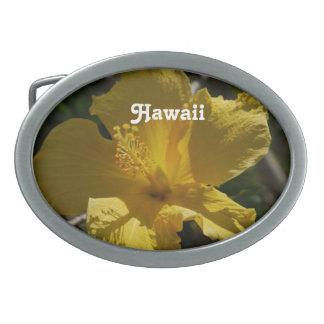 Hibisco hawaiano hebillas de cinturón