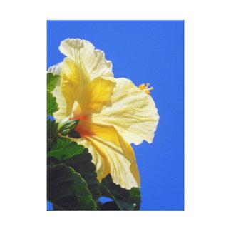 Hibisco hawaiano impresion de lienzo