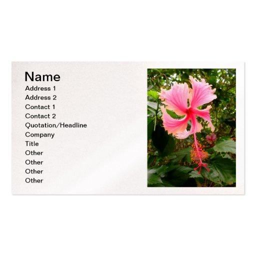 Hibisco hawaiano plantilla de tarjeta de visita