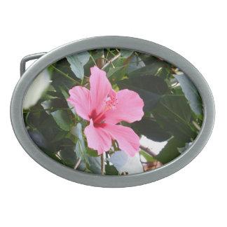 Hibisco Hebillas De Cinturon Ovales