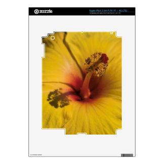 Hibisco Pegatinas Skins Para iPad 3