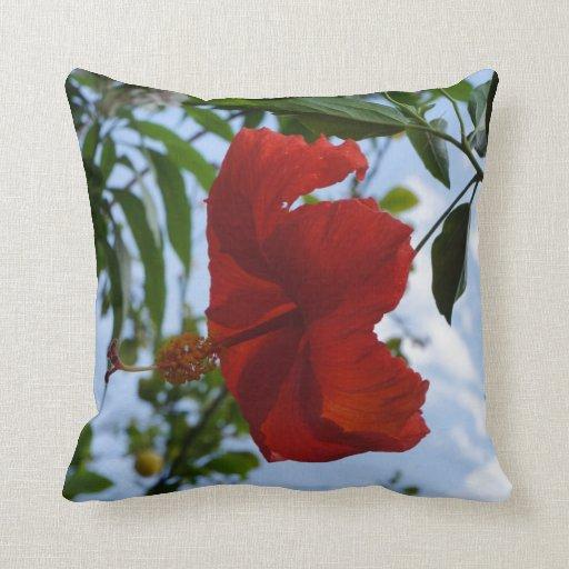 Hibisco rojo almohadas