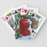 Hibisco rojo cartas de juego