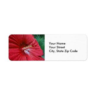 Hibisco rojo con la etiqueta del remite de las etiqueta de remitente