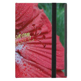 Hibisco rojo con las gotas de agua iPad mini coberturas